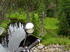 Mirror Image 