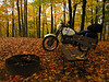 Wild Cat Mountain