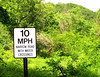 10 mph narrow road with water crossings