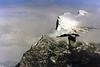 Unknown peak in the Canadian Rockies  Vintage 1980 era scanned photo