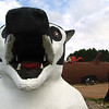 Birnamwood, Wisconsin - World's Largest Badger  Was at one time part of a gift shop, now part of a Gentlemens Club